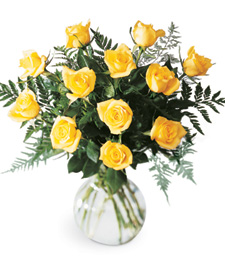 Sweet and Soft Rose Get Well Bouquet