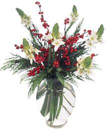 Winterfresh Christmas Bouquet